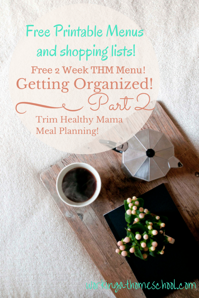 Get Organized with free THM printables!