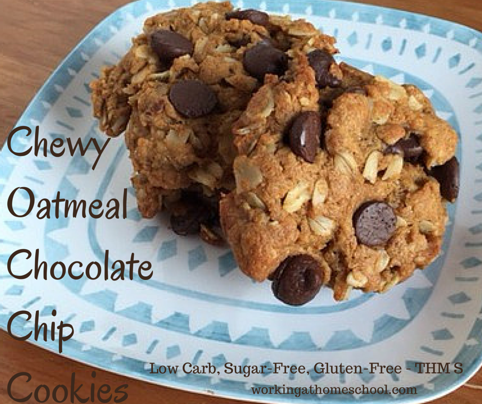 Trim Healthy Mama Chewy Chocolate Chip Cookies
