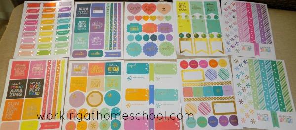 Erin Condren's Classic Sticker Book