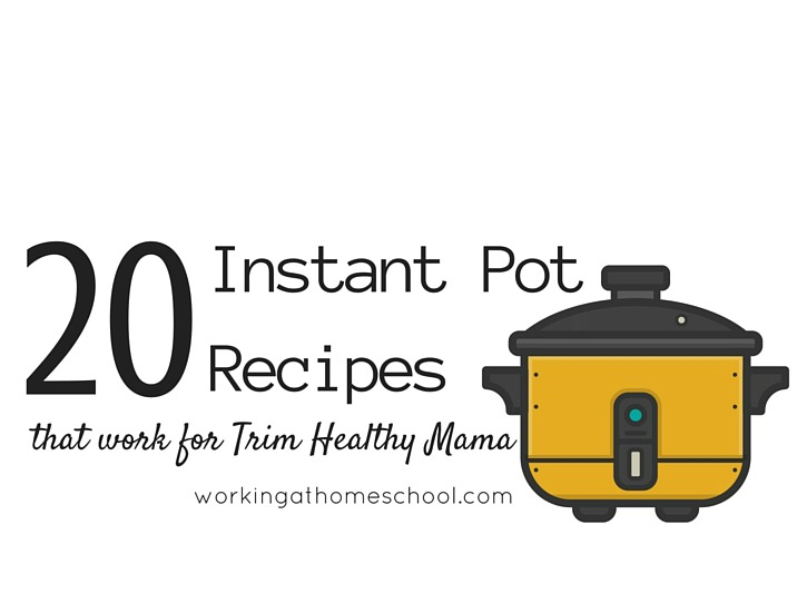 Over 20 Amazing Trim Healthy Mama Instant Pot Recipes