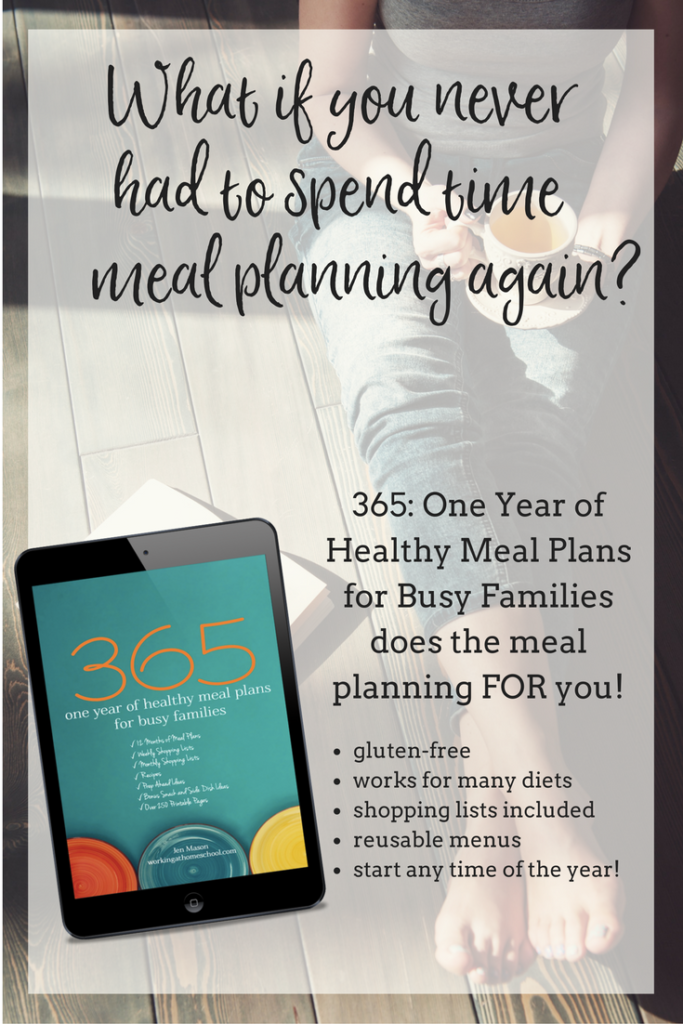 ONE FULL YEAR of gluten-free printable meal plans, shopping lists, and tons of bonus meal ideas! These meals also fit into the Trim Healthy Mama lifestyle. Perfect for busy moms!