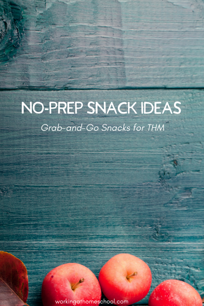 Quick, easy, healthy - no prep snacks for THM! These are Grab & Go!