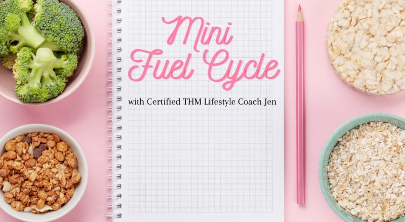 Mini Fuel Cycle Challenge