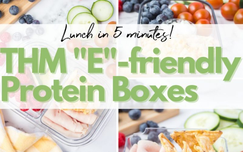 Trim Healthy Mama Lunch Ideas with DIY Protein Boxes – E Version